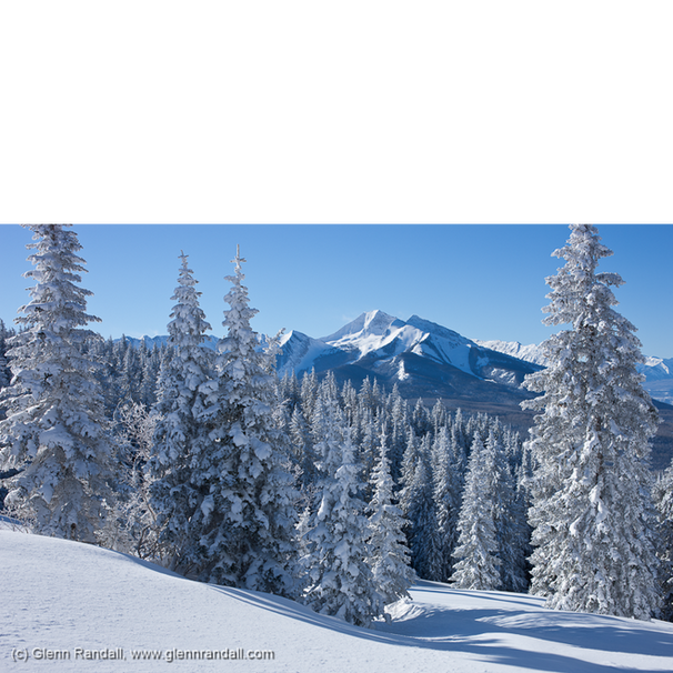 Colorado Winter Portfolio