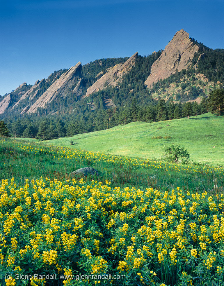 The Flatirons from Chautauqua, Boulder Mountain Parks, Colorado