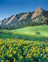 The Flatirons from Chautauqua, Boulder Mountain Parks, Colorado
