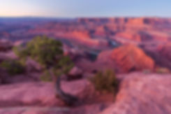 Twilight Glow at Dead Horse Point, Dead Horse Point State Park, Utah