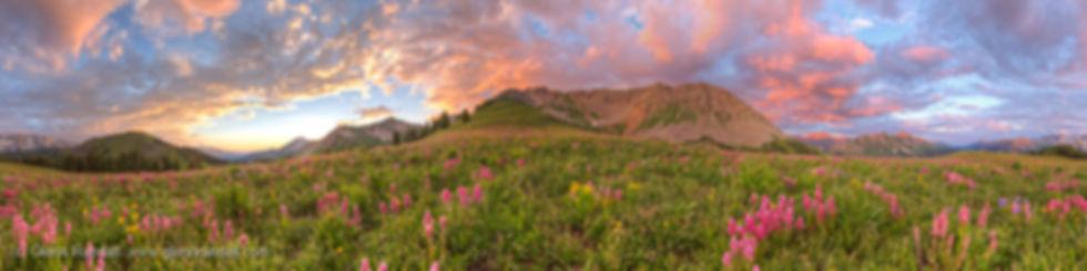 Meadow_Mountain_Panorama_15_75x60_980.jp