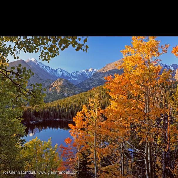 Colorado Autumn Portfolio