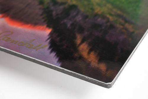 Detail_e-panel_aluminum_print_500.jpg