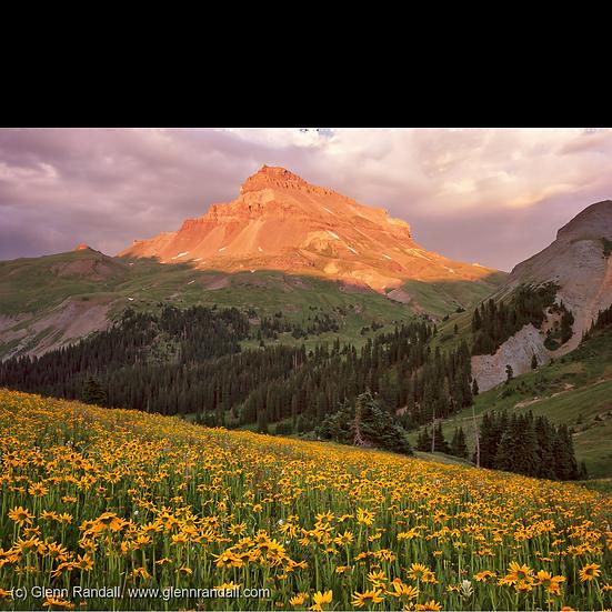 Uncompahgre Peak at Sunset