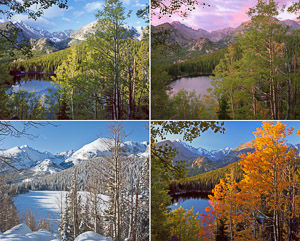 Bear Lake Four Seasons_16.25x20.25 print