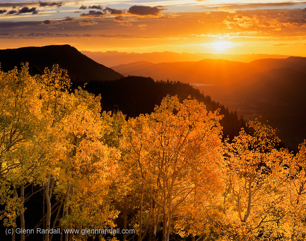 Sunrise Aspen, Rocky Mountain National Park, Colorado