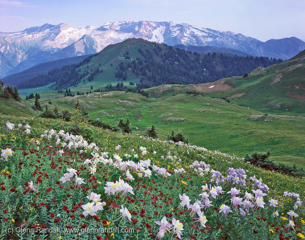 Silver Creek Basin and Treasure Mountain, Maroon Bells-Snowmass Wilderness, Colorado