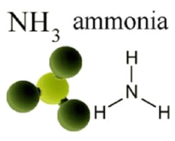ammonia.PNG