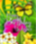 Tropical Birthday Wishes 1598080.JPG