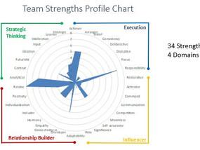 StrengthsFinder Team Profile Chart