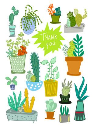 Thank you, house plants