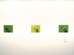 Green Screen, 2013