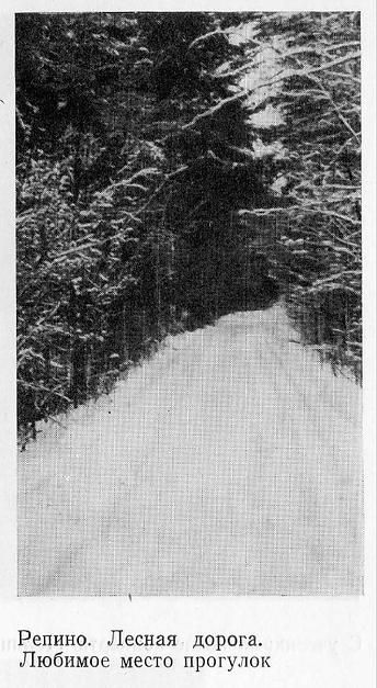 Репино. Лесная дорога. 1976 год.