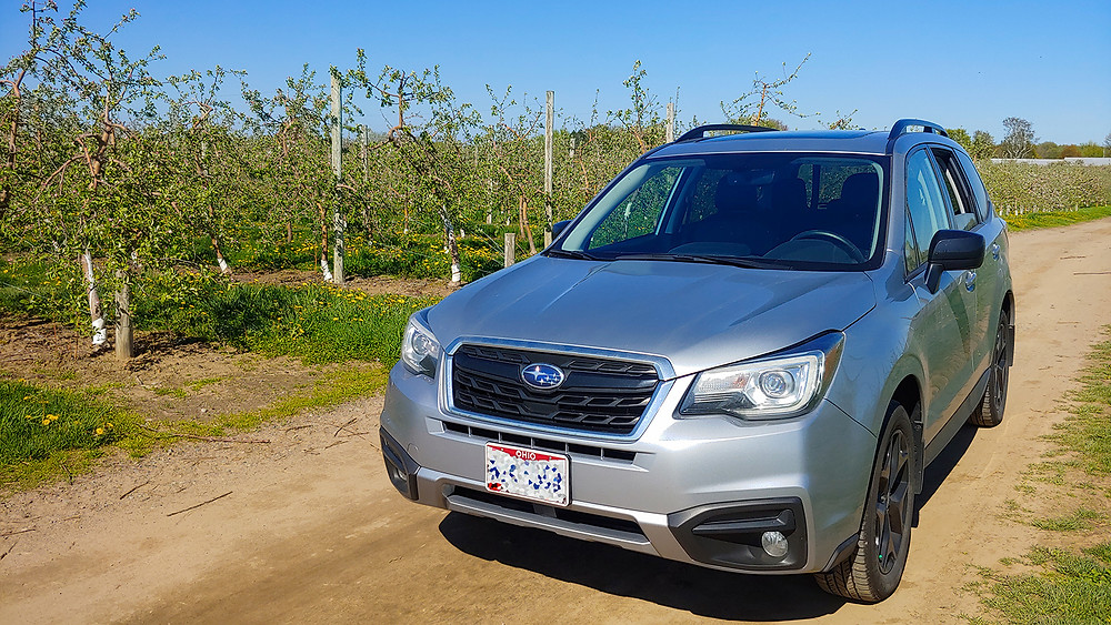 Subaru Forester in Orchard