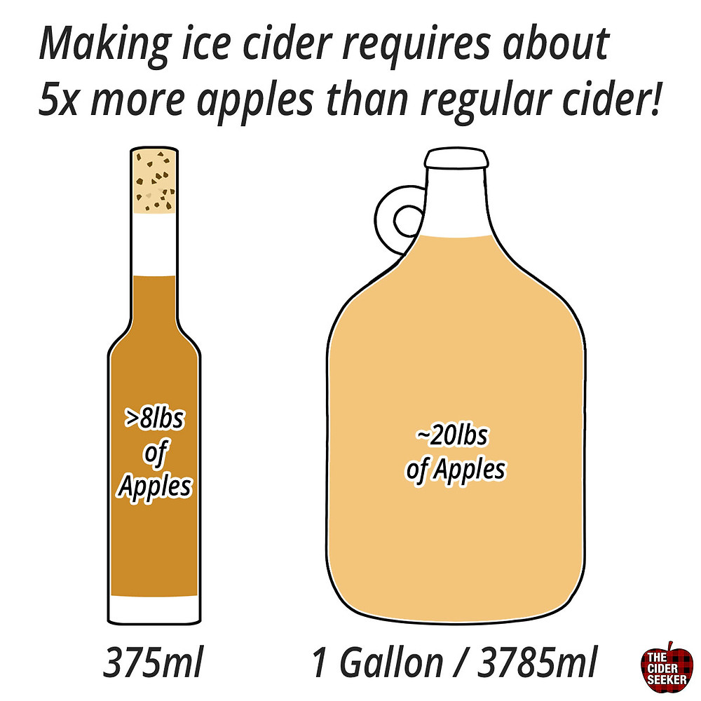 Making ice cider requires 5x times more apples than regular cider