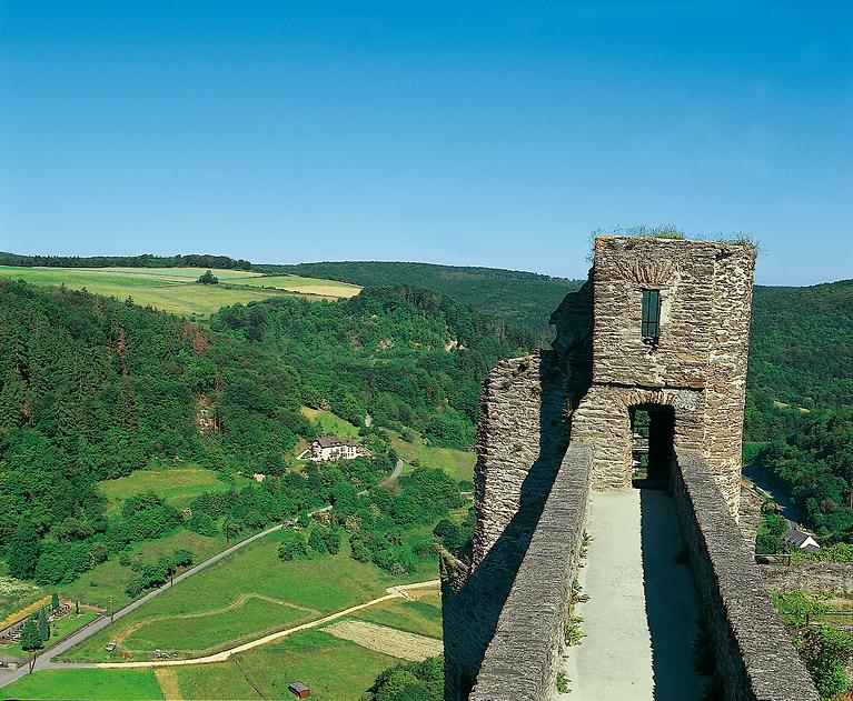 Burg Hohenstein in unmittelbarer Nähe der Krankenpflegestation Aarbergen-Hohenstein