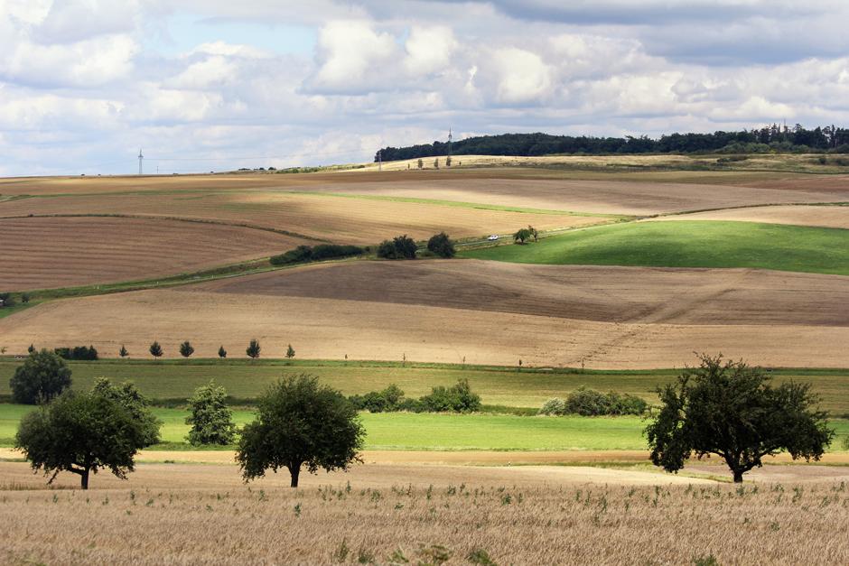 Die zauberhafte Landschaft rund um Hünfelden wird nicht umsonst der Goldene Grund genannt.