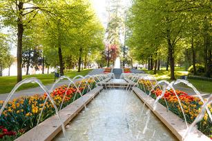 Wasserspiel im Kurpark Bad Camberg