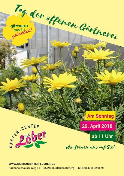 """Lust auf Frühlingsgewühle? """"Gärtnern macht glücklich"""" sagt Kirsten Löber, Chefin der Gärtnerei Löber in Hünfelden-Kirberg"""