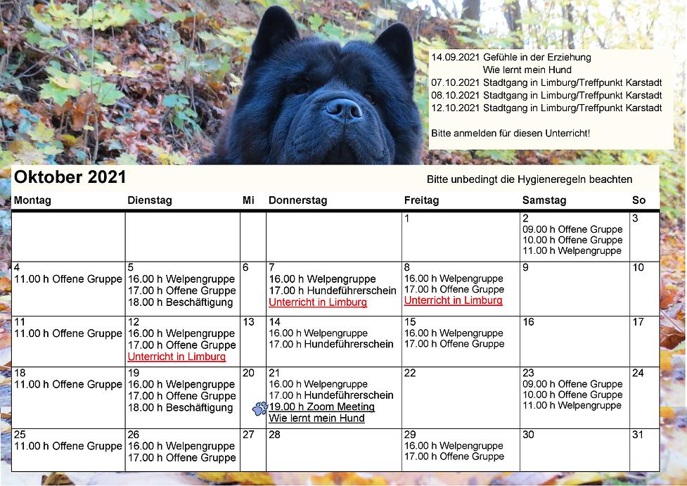 Unterrichtsplan 2021-09-10 (2).png