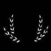 Awards_HudsonValleyFilmFestival_2020_Aud
