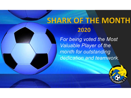 SHARK OF THE MONTH