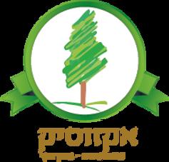 exotik logo.png