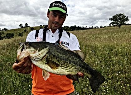 Bass Portugal