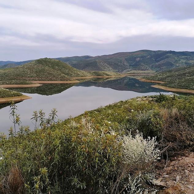 vue lac.jpg