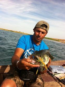 Bass Alqueva