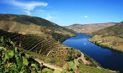 Pêche sur le Douro