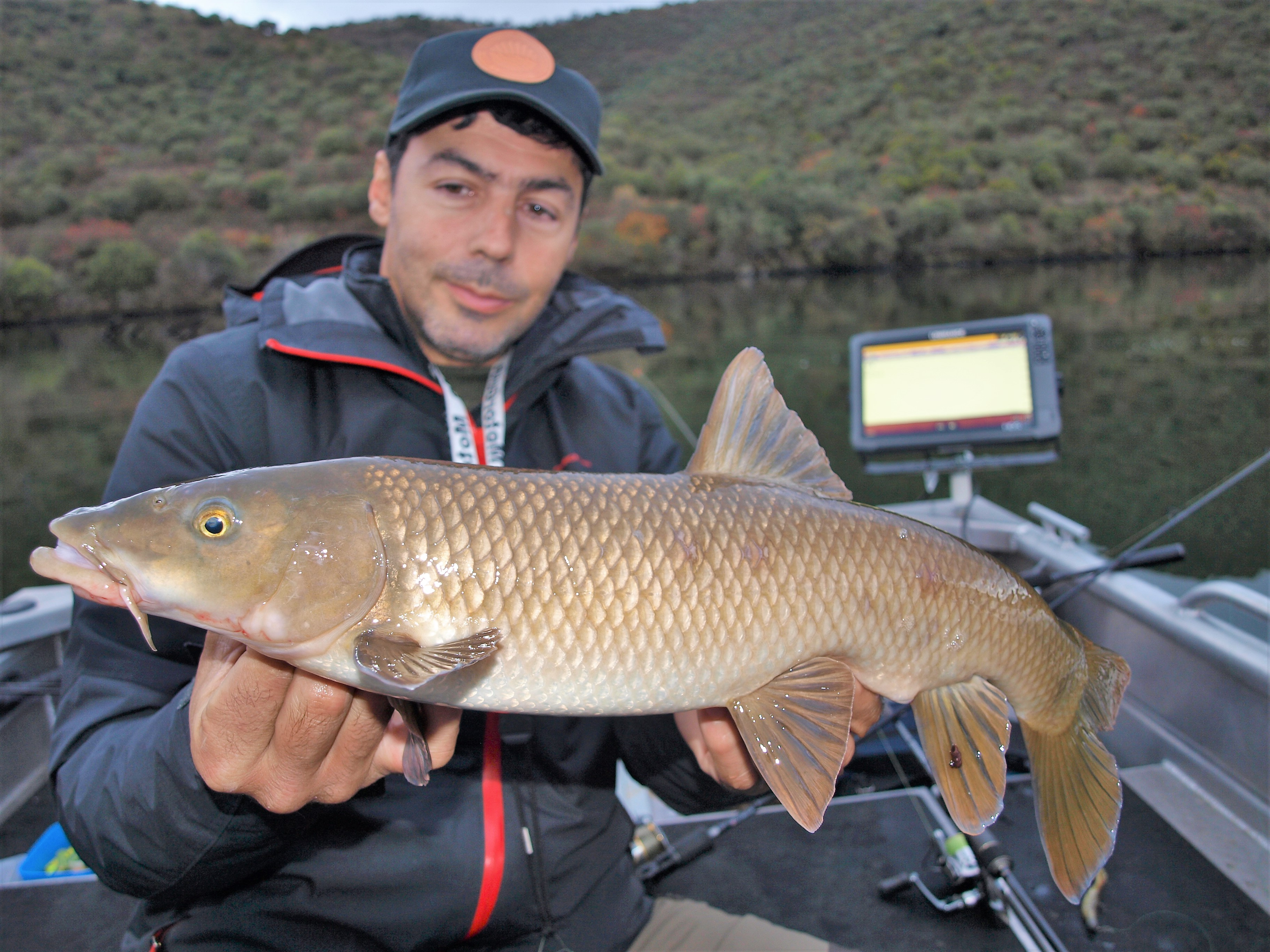 Pêche du barbeau au Portugal