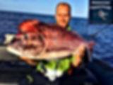 Pêche à Madère, Dentex Madère
