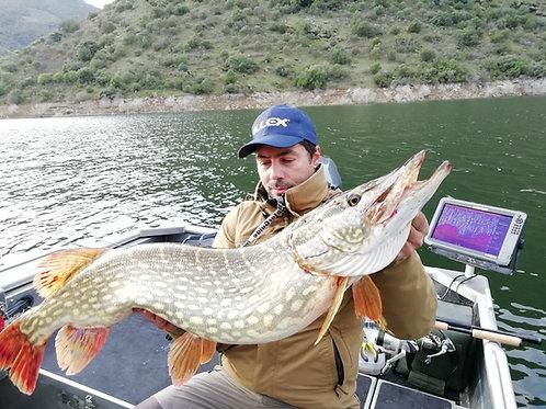 Pêche du Brochet au Portugal, à partir de