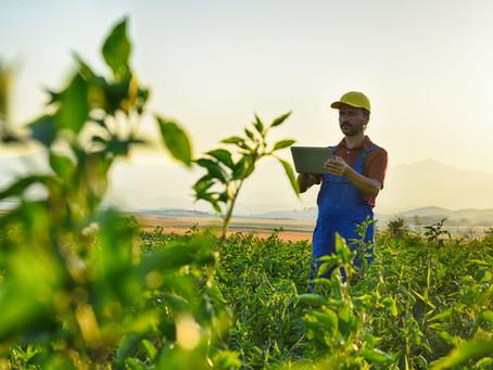 Saiba como a conectividade pode ajudar os produtores rurais