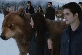 Twilight Jacob Robert Pattinson Batman