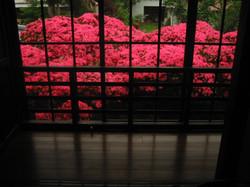 fujiya 096.jpg