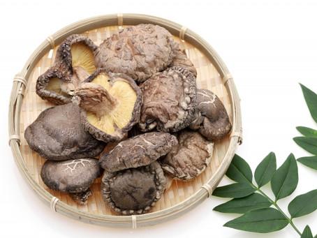 【蒸し通】人生で一番美味しい干し椎茸に出会う!