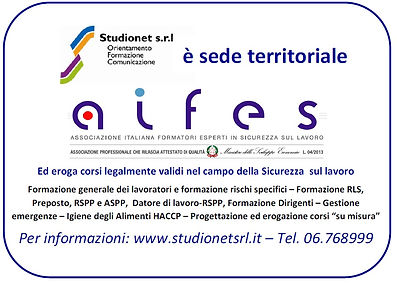 Studionet-AIFES.jpg