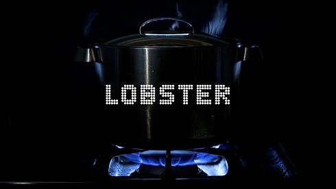 LOBSTER_WEBSITE_PROJECT.png