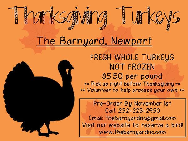 thanksgiving turkey 2017.jpg