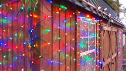 Lights on the shed