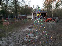 Christmas lights in the barnyard