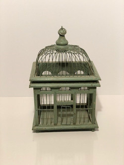 blue green bird cage
