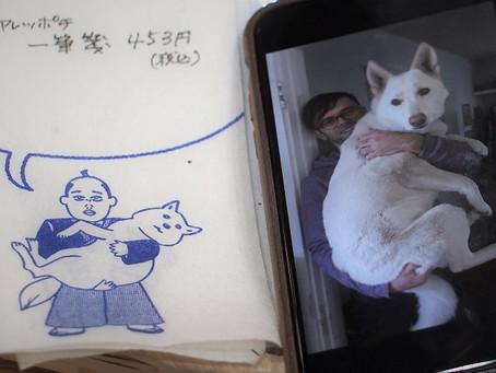 「綱吉くん」の犬のそっくりさん!