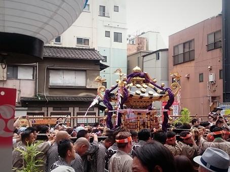 三社祭です!