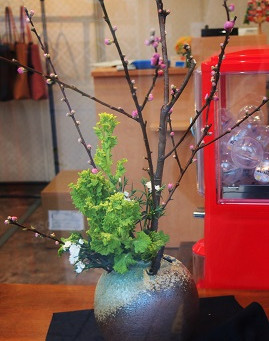 桃と菜の花とナデシコ
