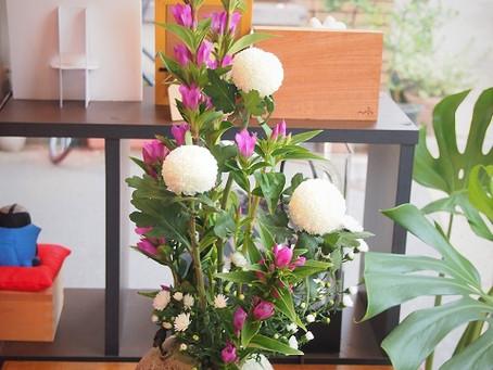 リンドウとピンポン菊