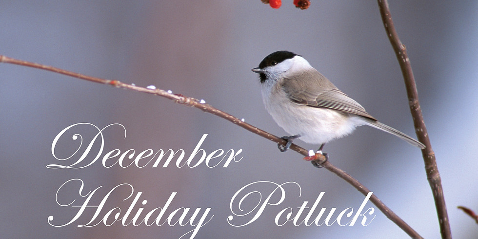 December Holiday Potluck