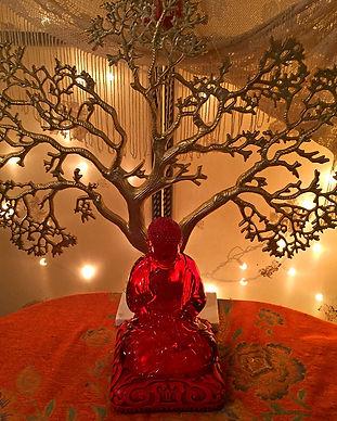 healingspecialties_img_tree.jpg